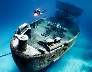 Kittiwake Shipwreck & Artificial Reef Header